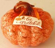grateful-pumpkin-1