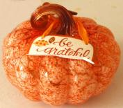 grateful-pumpkin-1